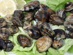 Amêijoas com Chouriço - Gastronomia Portuguesa - Roteiro Gastronómico de Portugal