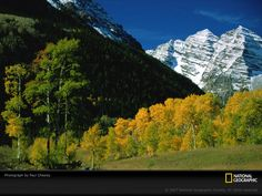 mountain-and-trees-394910-sw.jpg (800×600)