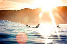Sun, Surf, Love.