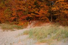Fall in South Haven. One of my favorite places.
