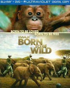 Born to be Wild