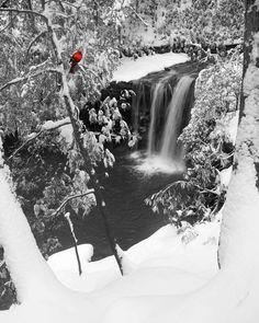Winter scene in Logan, West Virginia
