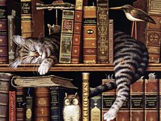 curl up with a good book ;)