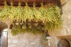 Traditionally dried #herbs  - The Lycian Way #Turkey
