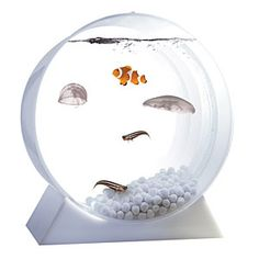 ThinkGeek :: Desktop Jellyfish Tank