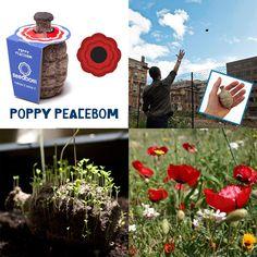 Poppy PeaceBom