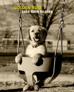 golden rule... take time to play