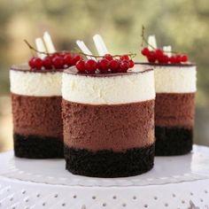 Chocolate Mousse Mini Cakes