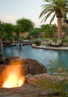 Beautiful Backyard date palm install large date palm 18  feet clear trunk wholesale date palms #realpalmtrees 1-888-778-2476