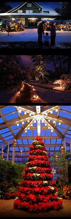 Dow Gardens Christmas Walk!