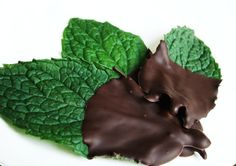After Dinner Mints -- cool idea for excess lemon balm     a handful of fresh mint leaves  4 ounce bar of fine dark chocolate