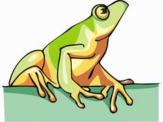 amphibian pictures, videos, games and puzzles