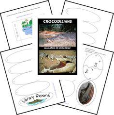 "Crocodilians Lapbook use with ""The Selfish Crocodile"""
