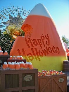 candy corn acres in California Adventure...I want to go!!