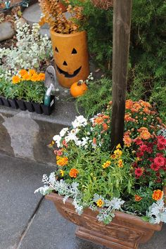 Fall flowers and a pottery jack-o-lantern set the tone for a gorgeous autumn garden. Designer Melissa Valeriote shares her fall decorating ideas-- indoors and out-- on The Home Depot Blog. || @valeriotedesign