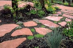 Garden paths design  ideas for stepping stones