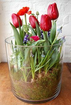 """""""Love Grows"""" Bulb Garden."""