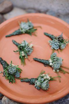 succulent boutonnieres, photo by Allie Lindsey Photography http://ruffledblog.com/san-diego-botanic-garden-wedding