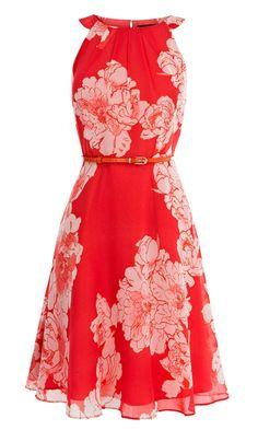 coast suzy dress £135