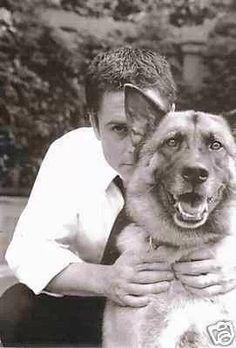 Rob Lowe and his German Shepherd Dog.