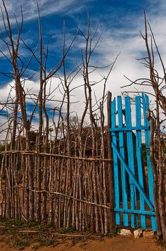 Twig fence with blue gate