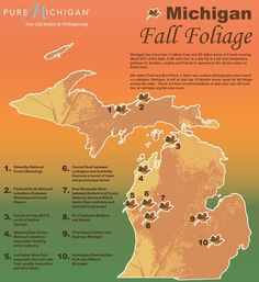 [Infographic] Todd and Brad Reed's Favorite Spots in Michigan for Fall Color