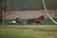 Amish kids on the way to a fishing hole