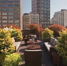 Roof top garden