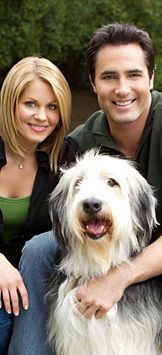 Puppy Love - About the Movie | Hallmark Channel-really cute movie!
