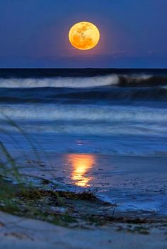 A full moon, Hilton Head Island, SC  (Close to Fripp Island, the best place on Earth.) per another pinner