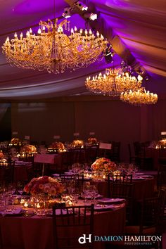 pink and peach wedding reception with chandeliers - Damion Hamilton
