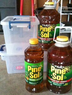A brilliant outdoor use for Pine-Sol: Flies HATE pine-sol. I mix it with water, about 50/50 and put it in a spray bottle. Use it to wipe counters or spray on the porch and patio table and  furniture - drives the flies away!  Will have to try this!