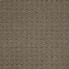 """Carpeting in the Caress Collection style """"Luxe"""" color Tibetan Plateau - by Shaw Floors"""