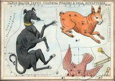 Card 30  Canis Major, Lepus, Columba Noachi, and Cela Sculptoris (i.e. Caelum) - Urania's Mirror