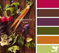 color palettes, veget hue, design seeds, chocolate color palette, color schemes, chocolate color scheme, kitchen colors, bedroom colors, brown color scheme for bedroom
