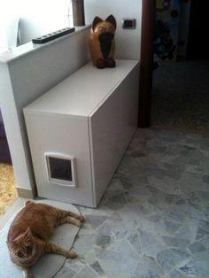 IKEA Hack: hidden cat litter box made with: Besta, TOFTA doors, and a cat flap