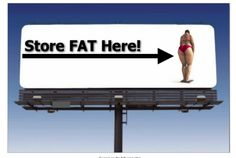 Primal Burn Fat Burner System – Will It Work and Can I Lose weight on http://unlimitedonlinemoneymakers.com/help-me-loose-weight/primal-burn-fat-burner-system-will-it-work-and-can-i-lose-weight