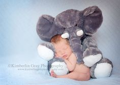 newborn idea this is soo cute and sweet BUT its still an elephant SOO I will have to do this with the next baby only... Use smokey! Haha