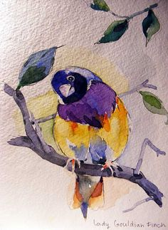 * watercolor bird