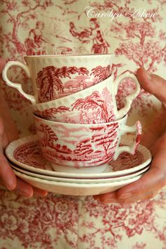 china patterns, tea sets, red transferwar, gardens, tea kettles, vintage tea, toile de jouy, teacup, christmas dishes