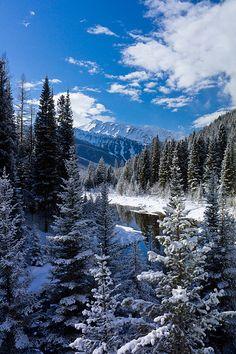 Stanton Creek, Great Bear Wilderness, Montana