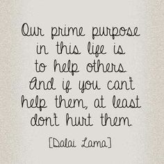 """Our Prime Purpose in this life is to help others and if you cant help them, at least don't hurt them"" - Dalai Lama"