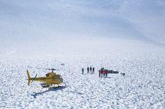 alaska travel, juneau alaska, american eagl, eagl photo, winter wonderland, guid 2013, stun scene, travel guid