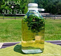 Fresh Eggs Daily®: Fresh Brewed Herbal Sun Tea