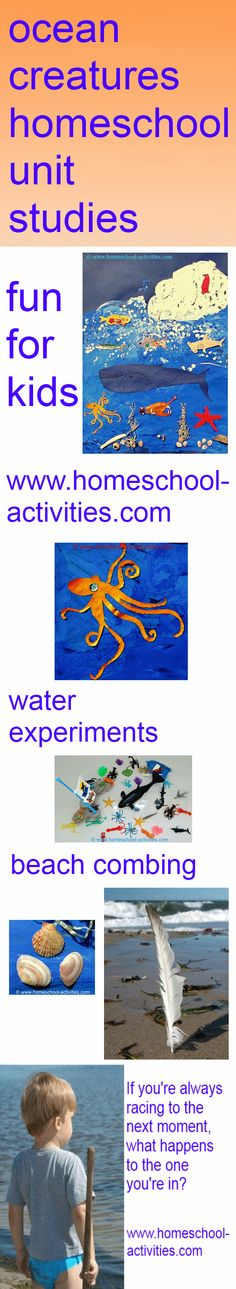 Ocean creatures kids homeschool unit studies. Make a collage, touch a sea urchin and listen to Monterey Bay aquarium's live kelp cam. All I need is an ocean. Fun stuff