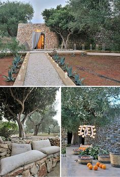 Surrounded by olive trees. Love the stone bench.