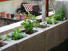 Herb cinder block garden