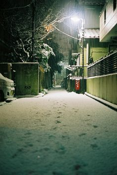 Snowy Tokyo / by Beta Photography