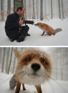 This is soo cute!