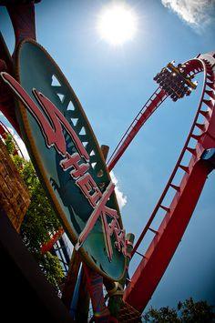 Busch Gardens Tampa: SheiKra | Flickr - Photo Sharing!